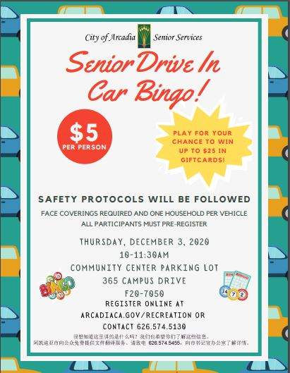 Senior Drive-In Car Bingo