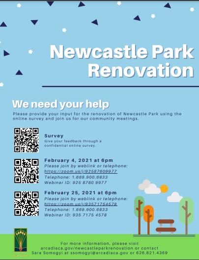 Newcastle Park Renovation input