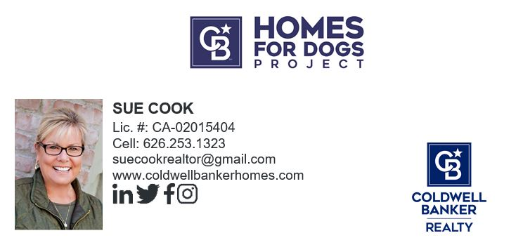 Sue Cook Homes for Dogs logo