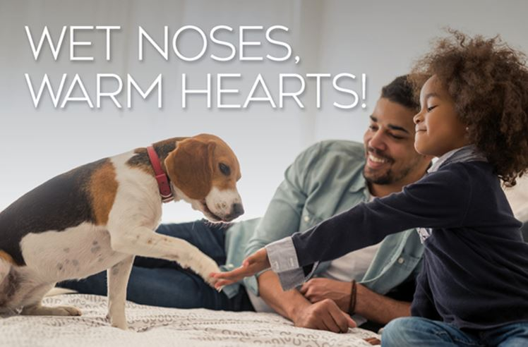 Wet Noses Warm Hearts dog with couple